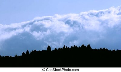 Lower flowing clouds and forest silhouette under sky