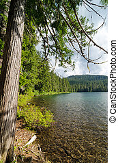 Lower Twin Lake in the Mt. Hood National Forest
