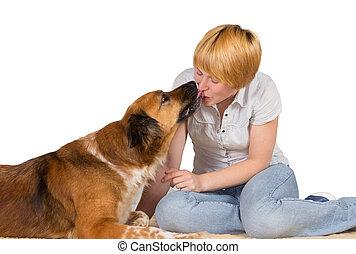 loyal, chien, aimer