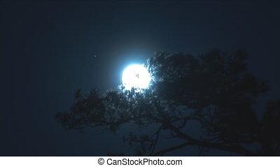 lua cheia, 2
