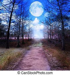 lua, cheio, madeiras