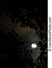 lua, entre, árvores