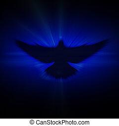 lucente, colomba, con, raggi, su, uno, scuro