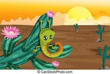 lucertola, cactus