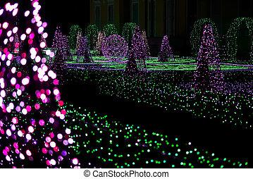 luces, jardín, colorido