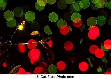 luces, jardín