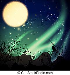 luces, norteño