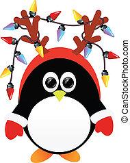 luces, pingüino