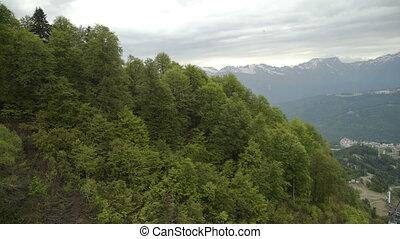 luchtmening, van, bos, op, berghelling