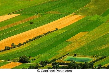 luchtopnames, velden, groene, aanzicht, oogsten, voor
