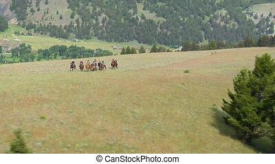 luchtschot, van, cowboy, op, mountaintop