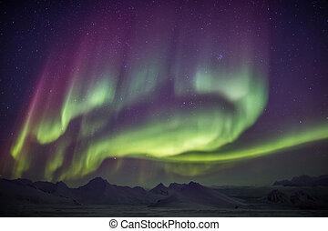 luci, artico, cielo, settentrionale