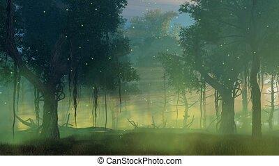 luciole, brumeux, cinemagraph, lumières, forêt, nuit
