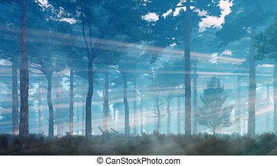 luciole, crépuscule, mystique, magique, lumières, forêt, 4k