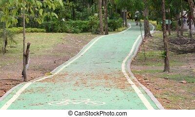 ludzie, pasaż, dróżka, jogging, park, rower