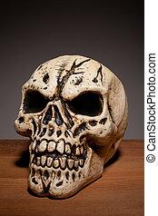 ludzka czaszka, copyspace