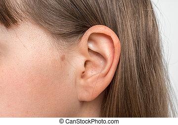 ludzki, do góry, głowa, ucho, samica, zamknięcie