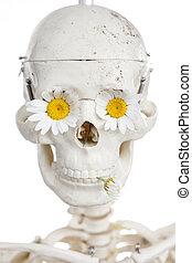 ludzki kwiat, czaszka, pojęcie