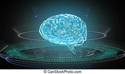 ludzki mózg, 3d, obracający, koła