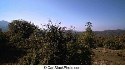 luftaufnahmen, landschaftsbild, ackerland, niksic, montenegro