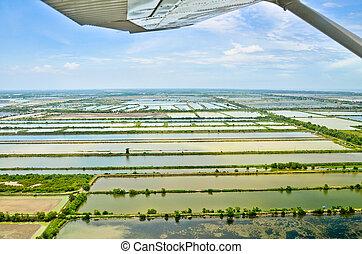 luftblick, von, reisanbau, terrassen, in, thailand