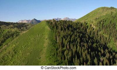 luftschuß, von, grüner wald, und, berge