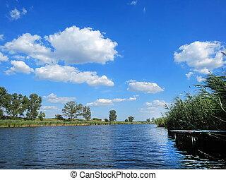 lugar, pesca
