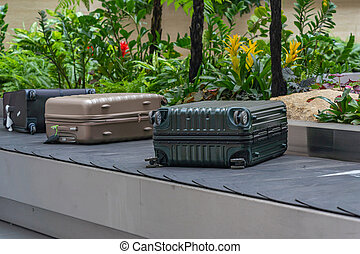 Luggage or suitcase on conveyor belt in beautiful Changi airport