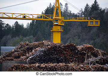 Logs piled up, ready for processing at a paper mill