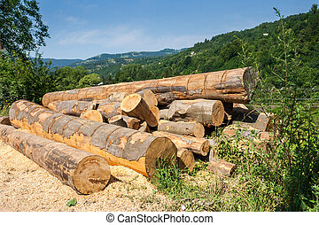 lumber in mountains - lumber on roadside with sawdust in...