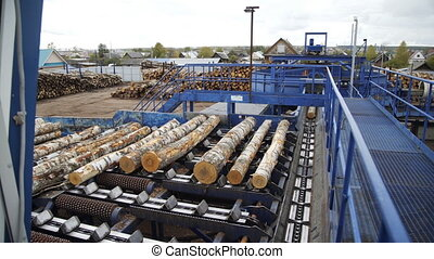 Lumber industry. Conveyors of logs in front of cutting ...