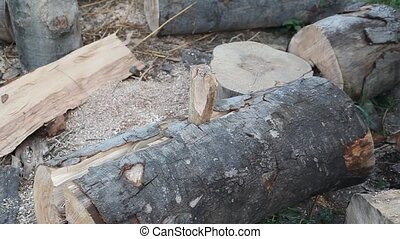 Lumber industry - Chopping wood with wooden wedge hammer and...