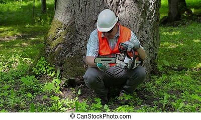 Lumberjack checking chainsaw near tree