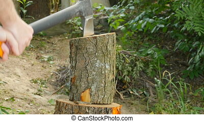 lumberjack chop wood with an ax - lumberjack holds an ax...