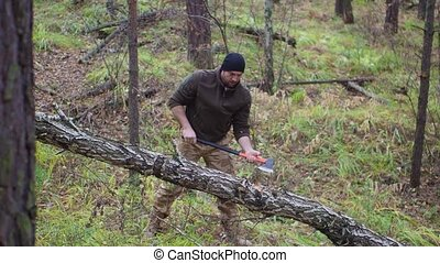 Lumberjack chopping wood in the forest.