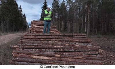 Lumberjack in the woods on a log pile