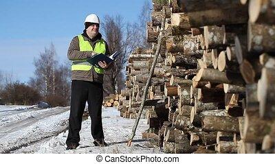 Lumberjack near at the log pile - Lumberjack near at the log...