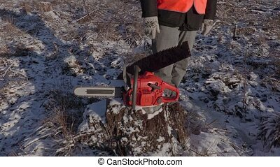 Lumberjack near chainsaw with old hand saw on stump in forest