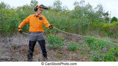 Lumberjack pulling rope in forest 4k - Lumberjack pulling ...