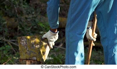 Lumberjack Splitting Wood And Cutting Firewood With Old Axe...