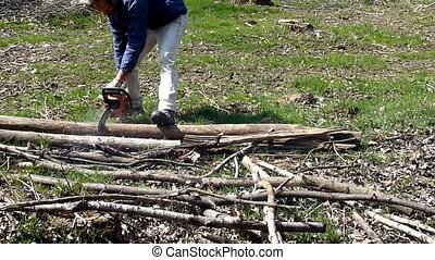 lumberjack - woodcutter cutting woods with a chainsaw