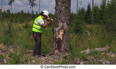 Lumberjack with ax near tree