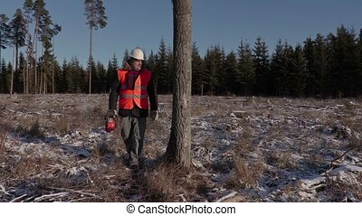 Lumberjack with chainsaw near tree in forest