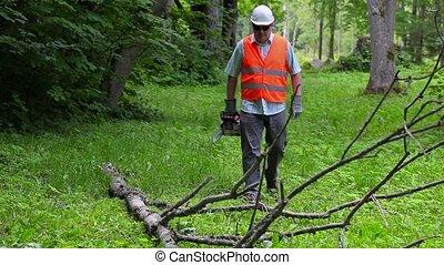Lumberjack with chainsaw walking near big tree branch