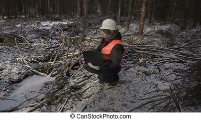 Lumberjack with laptop inspect destroyed forest