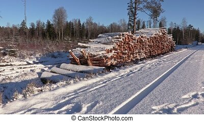 Lumberjack with rope and ax walking near  pile of snow covered logs in winter