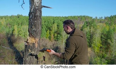 Lumberjack worker chopping down a tree breaking off many...