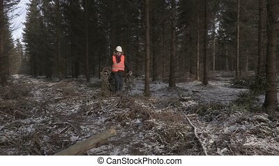 Lumberjack working in destroyed forest