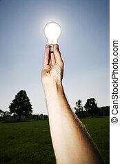 lumière, énergie, vert, solutions, ampoule