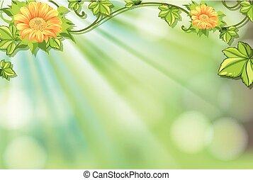 lumière, clair, fleurs, conception, fond